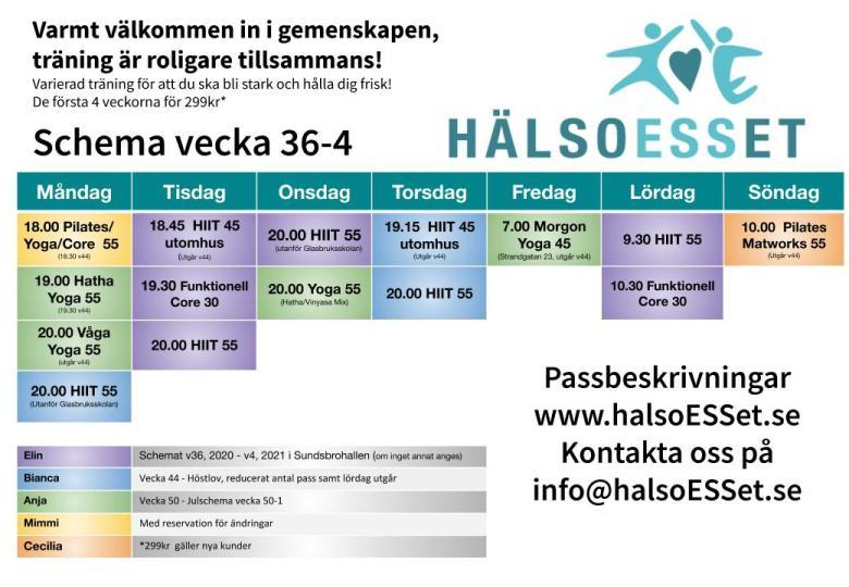 HälsoESSet träningsschema 2020_v35-50